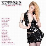 Various Artists - Extreme Sundenfall Volume 12